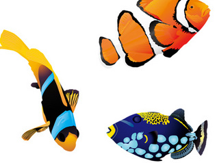 5fishes-600.jpg