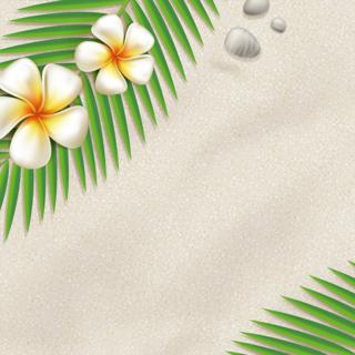 白い砂の夏のビーチにヤシの葉とハイビスカスの無料イラスト