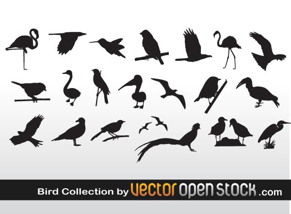 Bird Clip Art : クリスマスカード デザイン 無料 : カード