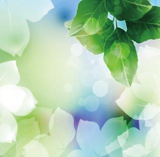 明るい光の中の緑の葉の背景の無料イラスト