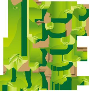 緑の葉のタグの無料イラストセット