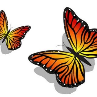 PairofButterflies017.jpg